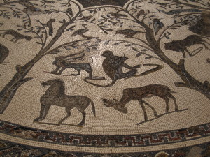 Solo in Morocco - mosaics in Volubilis